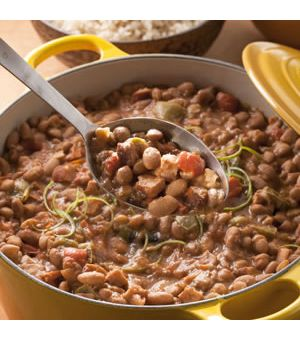 Pinto Bean and Andouille Sausage Stew