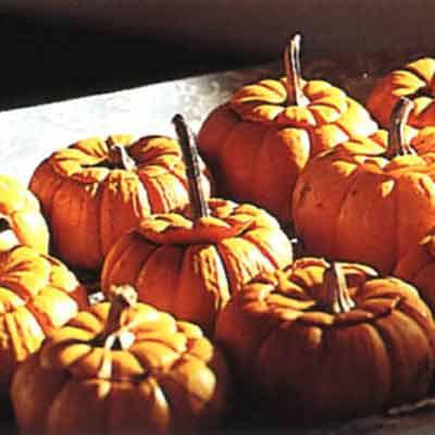 Roasted Mini Pumpkins