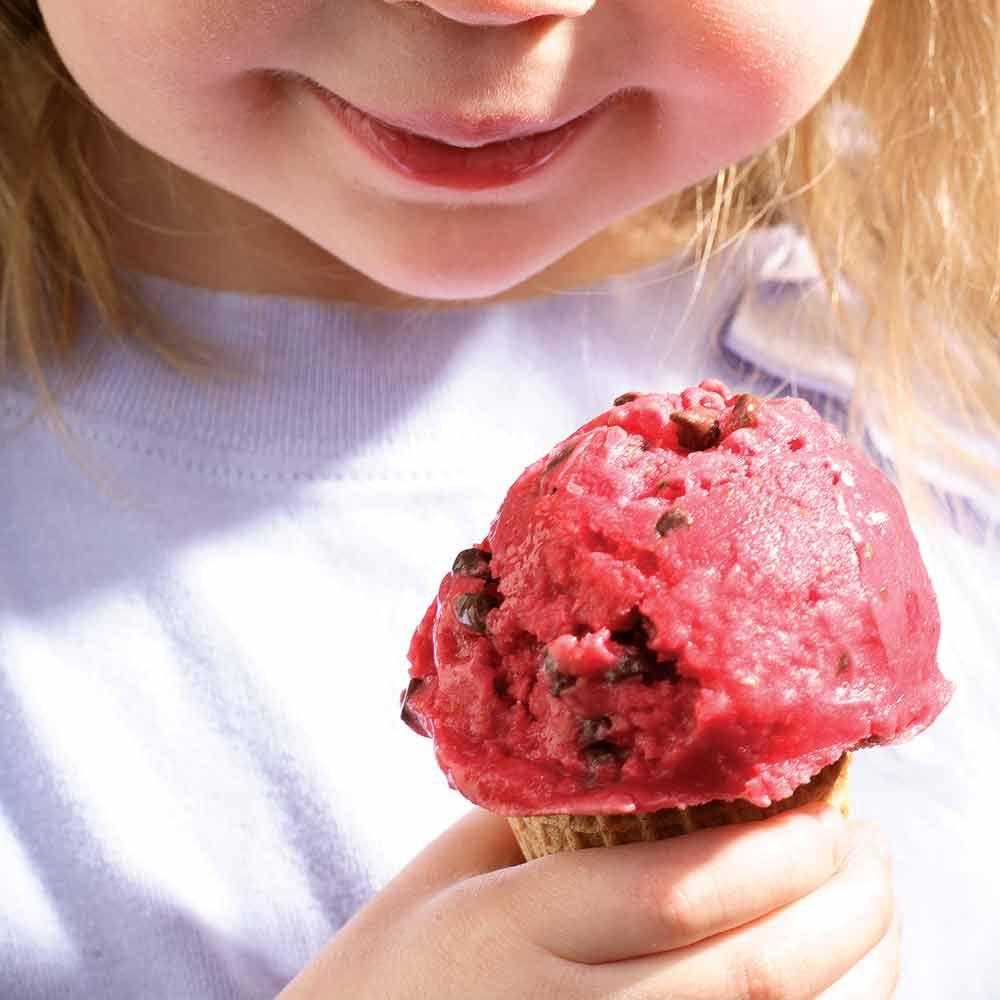 Raspberry-Chocolate Chip Frozen Yogurt