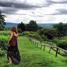 summer in Virginia