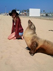 hi Mr. Seal