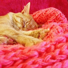 Cable Knit Throw style pic