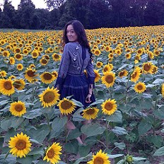 sunflower season?