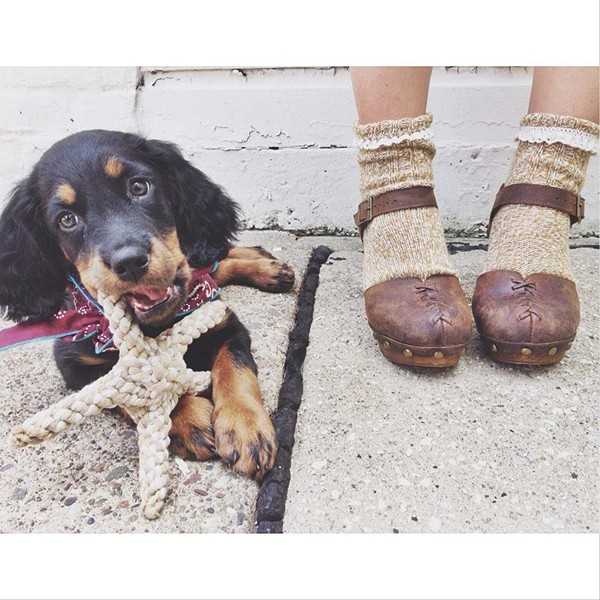 Two things I love the most, puppies & clogs