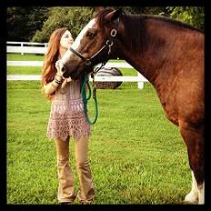 my horse friend