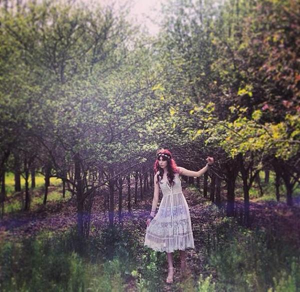 mystical abandon tree forest
