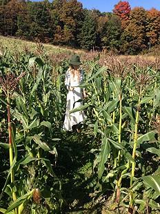 fall fever #sweetcorn