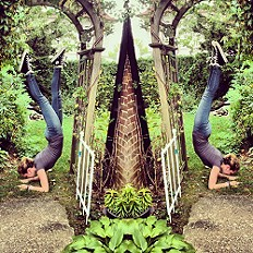 yogin out